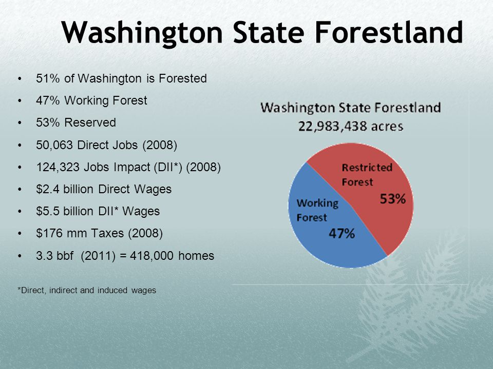 Washington State Forestland 51% of Washington is Forested 47% Working Forest 53% Reserved 50,063 Direct Jobs (2008) 124,323 Jobs Impact (DII*) (2008) $2.4 billion Direct Wages $5.5 billion DII* Wages $176 mm Taxes (2008) 3.3 bbf (2011) = 418,000 homes *Direct, indirect and induced wages