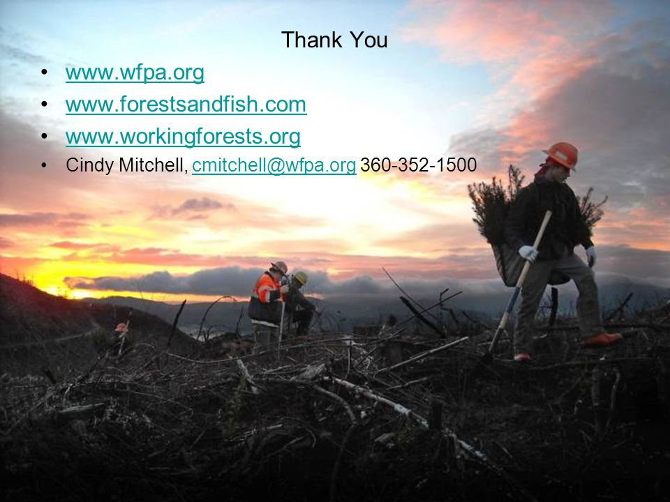 Thank You www.wfpa.org www.forestsandfish.com www.workingforests.org Cindy Mitchell, cmitchell@wfpa.org 360-352-1500cmitchell@wfpa.org