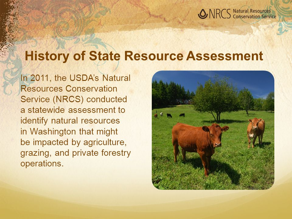 The assessment addressed natural resources: Soil Water Air Plants Animals (both farm animals and wildlife) Humans Energy History of State Resource Assessment