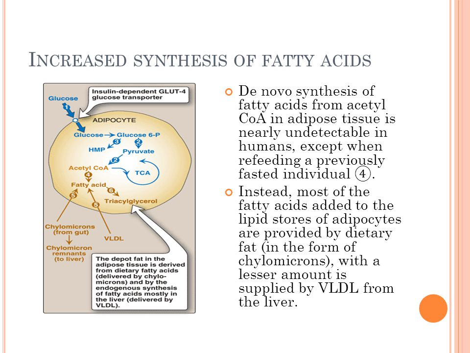 I NCREASED SYNTHESIS OF FATTY ACIDS De novo synthesis of fatty acids from acetyl CoA in adipose tissue is nearly undetectable in humans, except when r