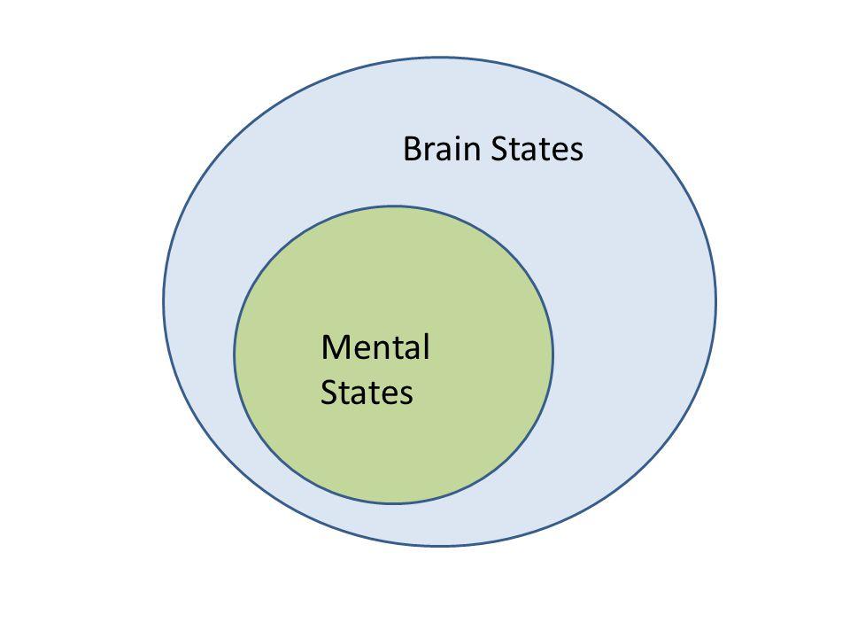 Mental States Brain States