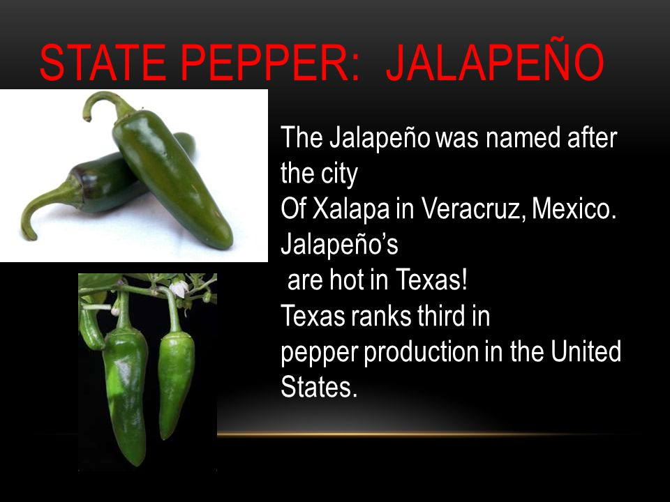 STATE PEPPER: JALAPEÑO The Jalapeño was named after the city Of Xalapa in Veracruz, Mexico.