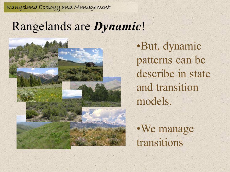 Rangelands are Dynamic.