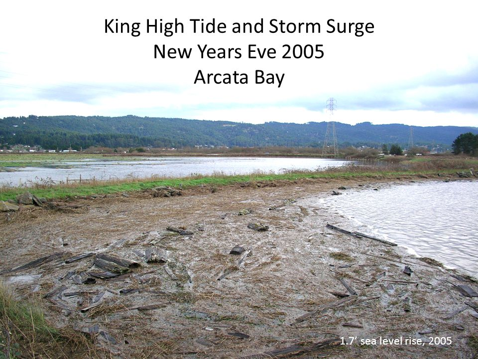 King High Tide and Storm Surge New Years Eve 2005 Arcata Bay 1.7' sea level rise, 2005