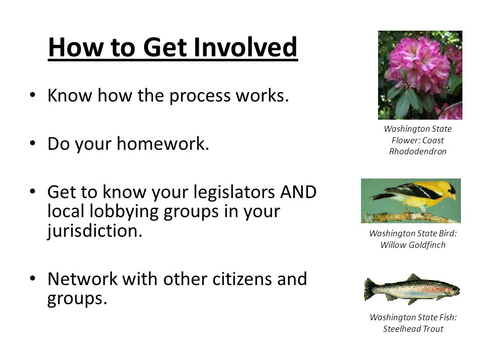 How to Get Involved Know how the process works. Do your homework. Get to know your legislators AND local lobbying groups in your jurisdiction. Network