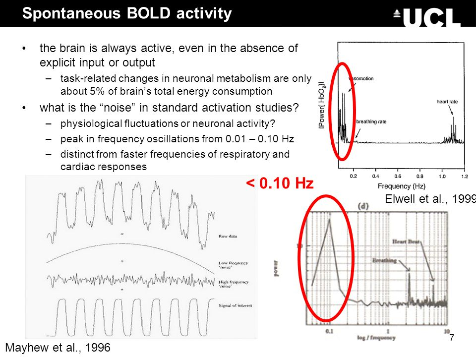 Spontaneous BOLD activity Elwell et al., 1999 Mayhew et al., 1996 < 0.10 Hz the brain is always active, even in the absence of explicit input or outpu