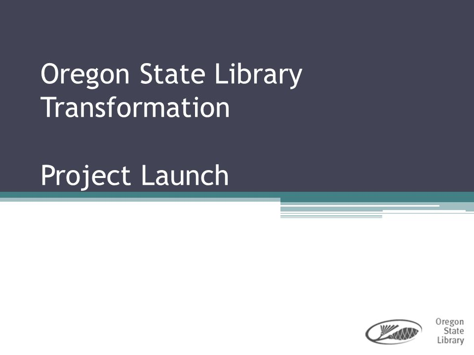 12 Participant and Roles in the OSL Transformation Library Staff – Subject Matter Experts Advisory Committee – Guidance for the Sponsor Project Team & Work Groups – Investigation & recommendations Project Leaders – Facilitation and pacing Project Sponsor – Directions & Decisions