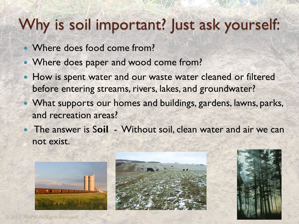 Why is soil important? Just ask yourself: Where does food come from? Where does paper and wood come from? How is spent water and our waste water clean