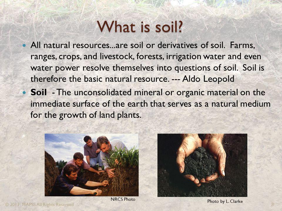 Lester Soil Horizons The Bk Horizon – Calcium carbonate (lime) accumulates in this horizon.