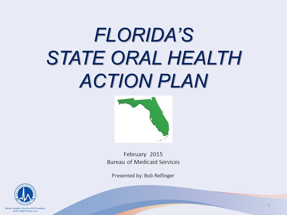FLORIDA'S STATE ORAL HEALTH ACTION PLAN February 2015 Bureau of Medicaid Services Presented by: Bob Reifinger 1