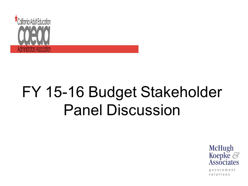 FY 15-16 Budget Stakeholder Panel Discussion