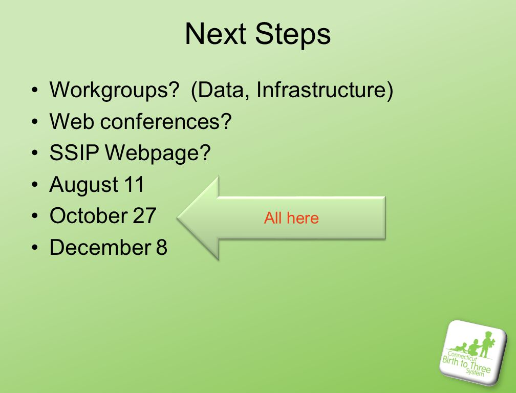 Next Steps Workgroups. (Data, Infrastructure) Web conferences.