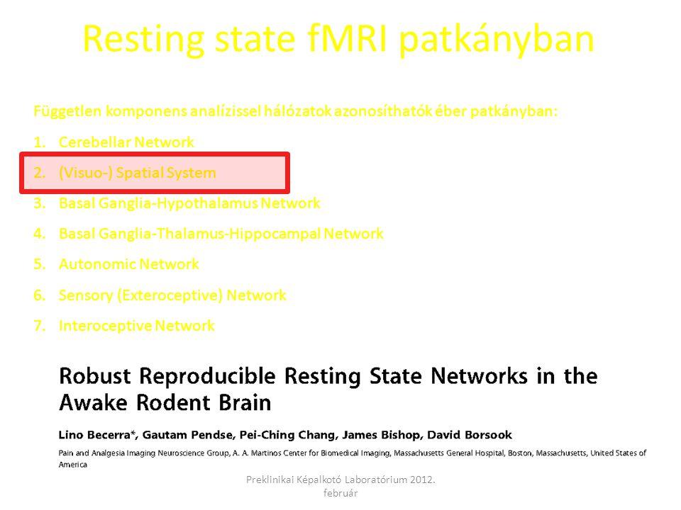 Resting state fMRI patkányban Független komponens analízissel hálózatok azonosíthatók éber patkányban: 1.Cerebellar Network 2.(Visuo-) Spatial System