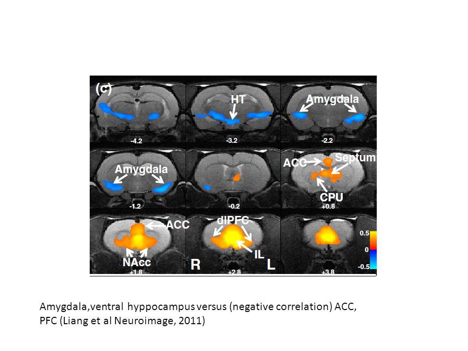 Amygdala,ventral hyppocampus versus (negative correlation) ACC, PFC (Liang et al Neuroimage, 2011)