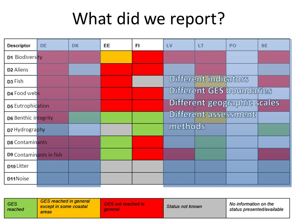 What did we report? Biodiversity Aliens Fish Food webs Eutrophication Benthic integrity Hydrography Litter Contaminants Contaminants in fish Noise