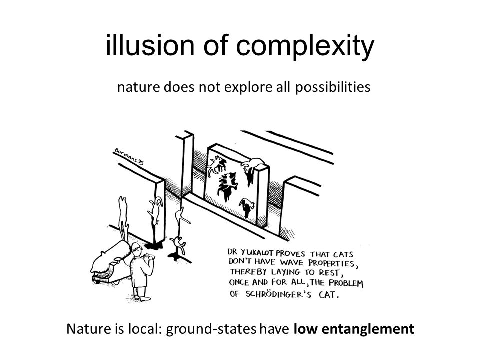 illusion of complexity nature does not explore all possibilities Nature is local: ground-states have low entanglement