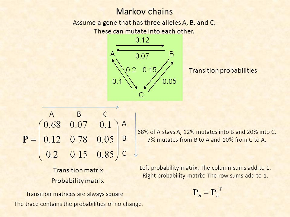 The probability matrix A T C G A T C G What is the probability that after 5 generations A did not change.