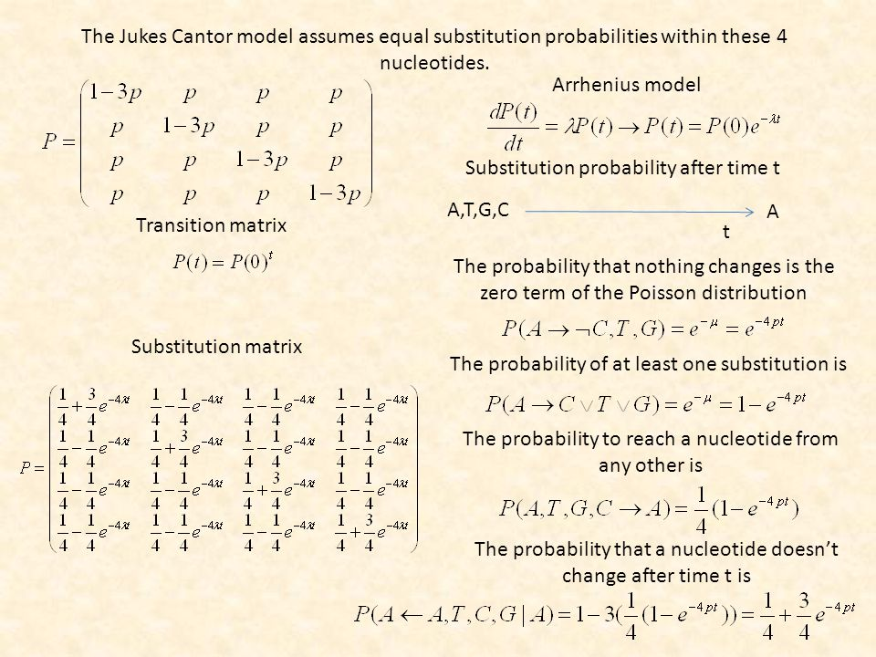 Arrhenius model The Jukes Cantor model assumes equal substitution probabilities within these 4 nucleotides.