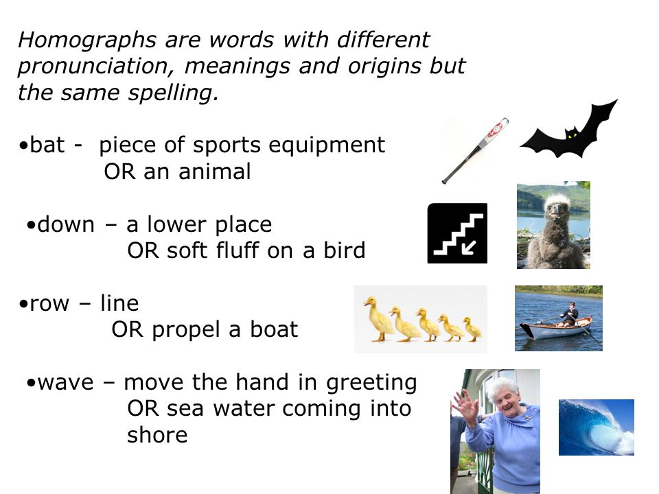 Homographs are words with different pronunciation, meanings and origins but the same spelling. bat - piece of sports equipment OR an animal down – a l