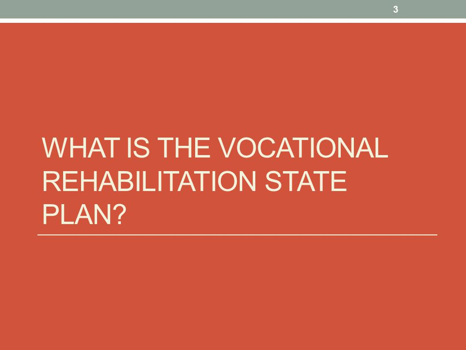 WHAT IS THE VOCATIONAL REHABILITATION STATE PLAN 3