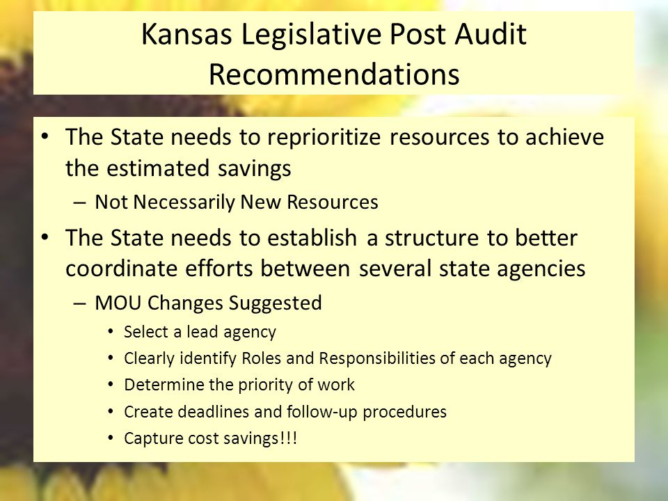 Kansas Legislative Post Audit Recommendations The State needs to reprioritize resources to achieve the estimated savings – Not Necessarily New Resources The State needs to establish a structure to better coordinate efforts between several state agencies – MOU Changes Suggested Select a lead agency Clearly identify Roles and Responsibilities of each agency Determine the priority of work Create deadlines and follow-up procedures Capture cost savings!!!