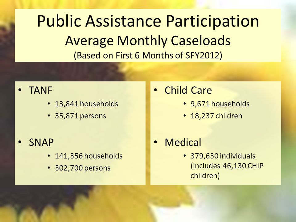Public Assistance Participation Average Monthly Caseloads (Based on First 6 Months of SFY2012) Child Care 9,671 households 18,237 children Medical 379,630 individuals (includes 46,130 CHIP children) TANF 13,841 households 35,871 persons SNAP 141,356 households 302,700 persons
