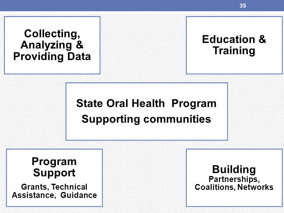 Collecting, Analyzing & Providing Data State Oral Health Program Supporting communities Education & Training Program Support Grants, Technical Assista