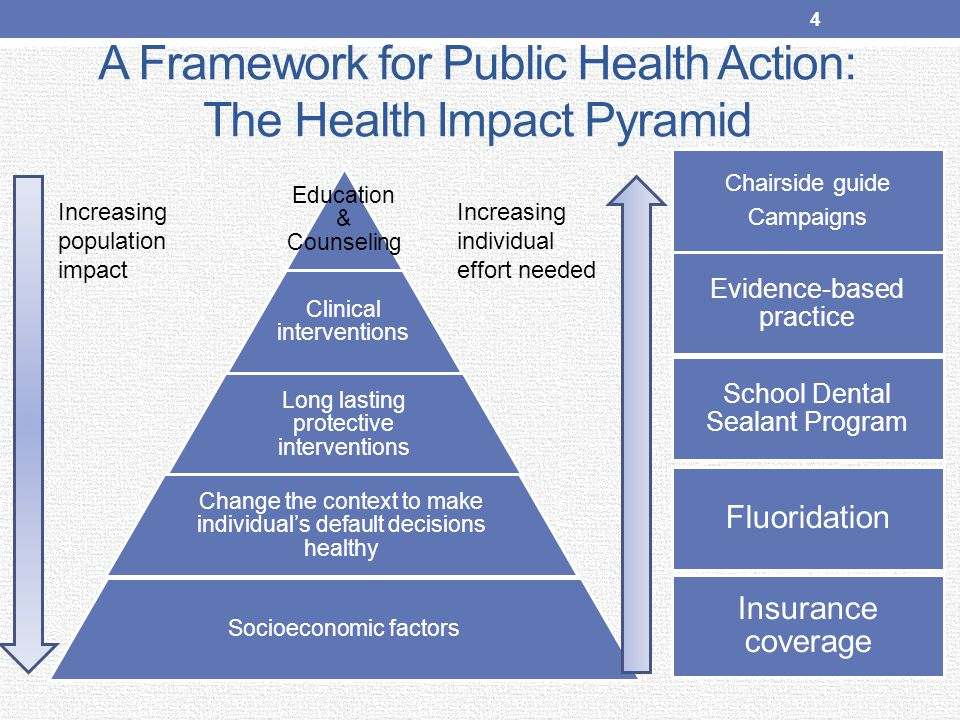 Collecting, Analyzing & Providing Data State Oral Health Program Supporting communities Education & Training Program Support Grants, Technical Assistance, Guidance Building Partnerships, Coalitions, Networks 35