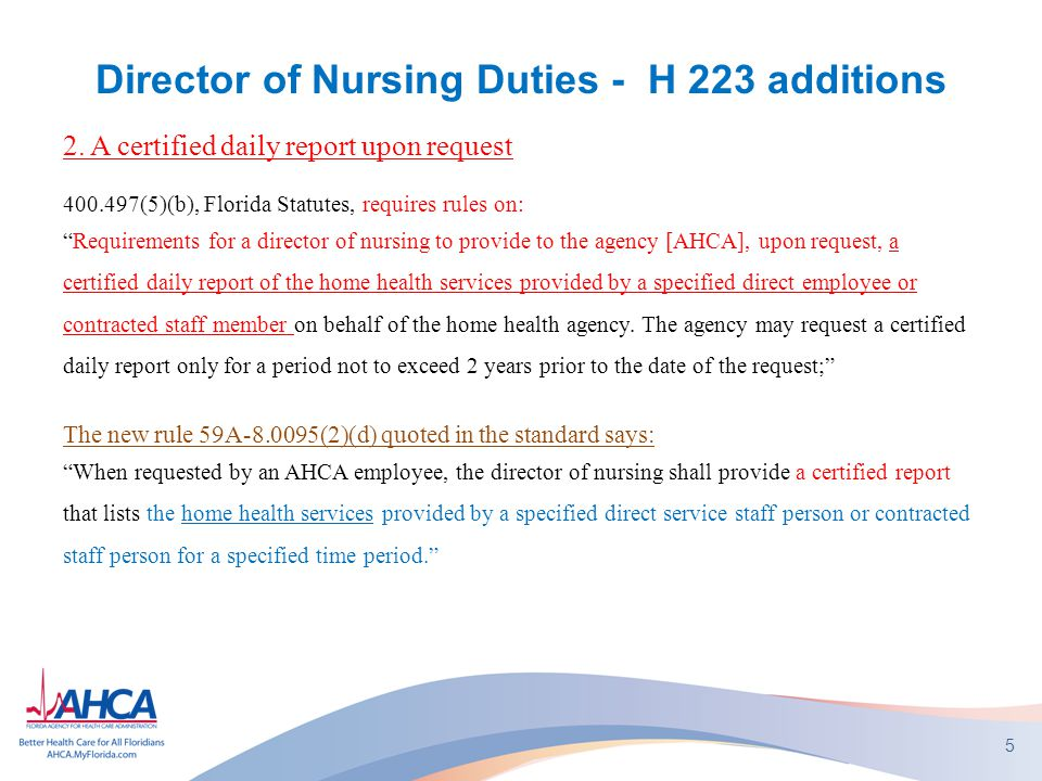 "Director of Nursing Duties - H 223 additions 2. A certified daily report upon request 400.497(5)(b), Florida Statutes, requires rules on: ""Requirement"