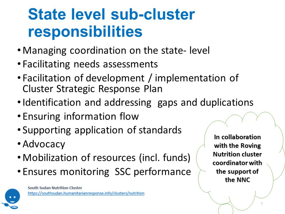 State level sub-cluster responsibilities Managing coordination on the state- level Facilitating needs assessments Facilitation of development / implementation of Cluster Strategic Response Plan Identification and addressing gaps and duplications Ensuring information flow Supporting application of standards Advocacy Mobilization of resources (incl.