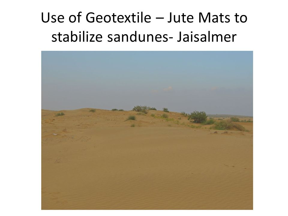 Use of Geotextile – Jute Mats to stabilize sandunes- Jaisalmer