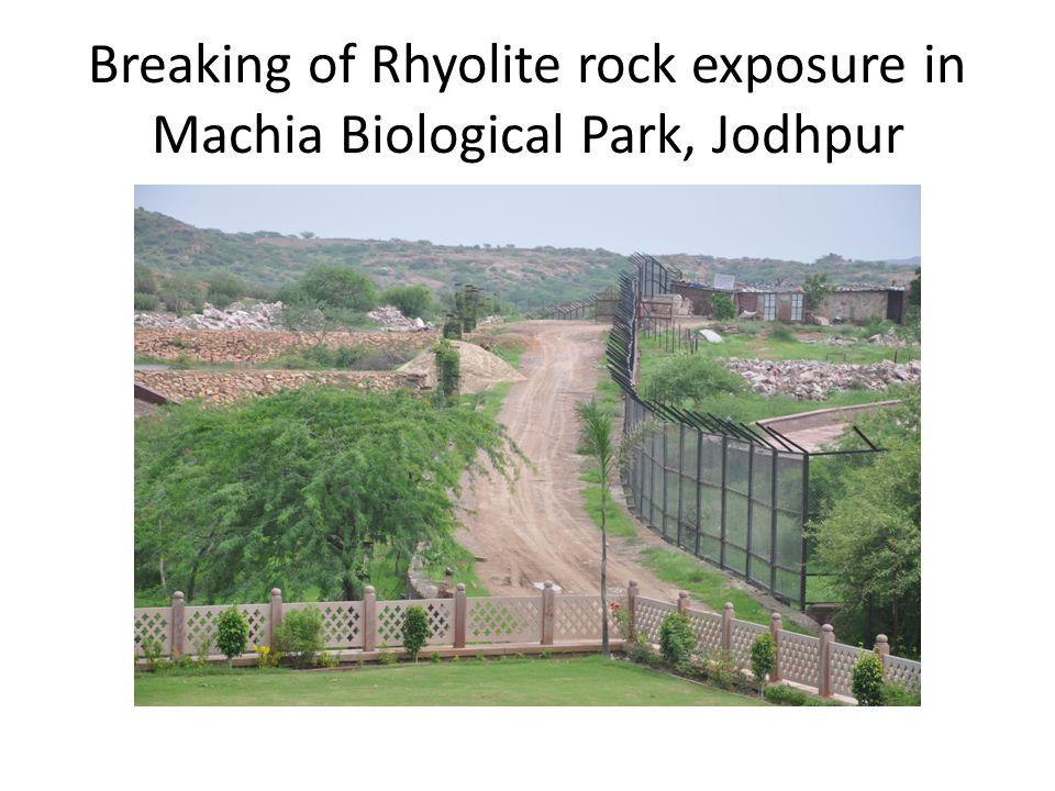 Breaking of Rhyolite rock exposure in Machia Biological Park, Jodhpur