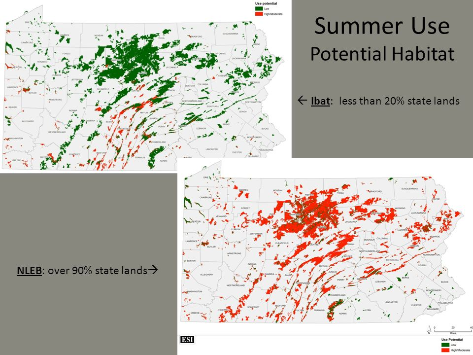 Summer Use Potential Habitat NLEB: over 90% state lands   Ibat: less than 20% state lands