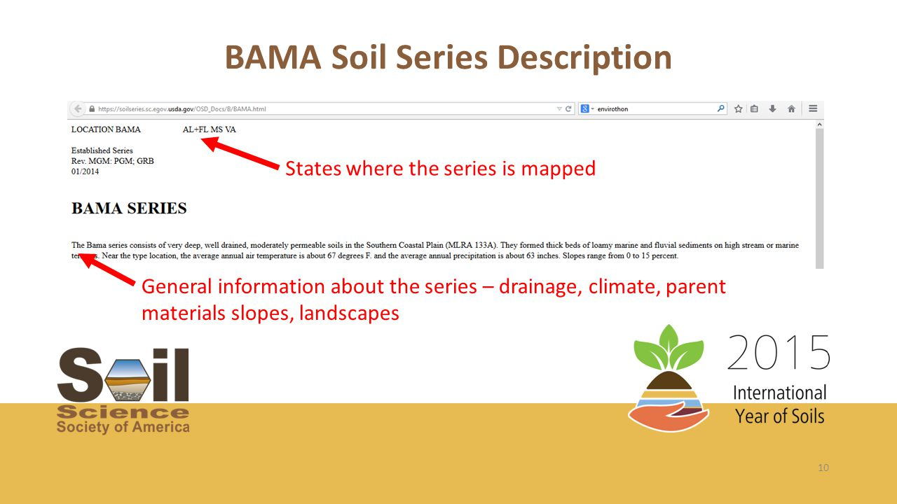 10 BAMA Soil Series Description States where the series is mapped General information about the series – drainage, climate, parent materials slopes, landscapes