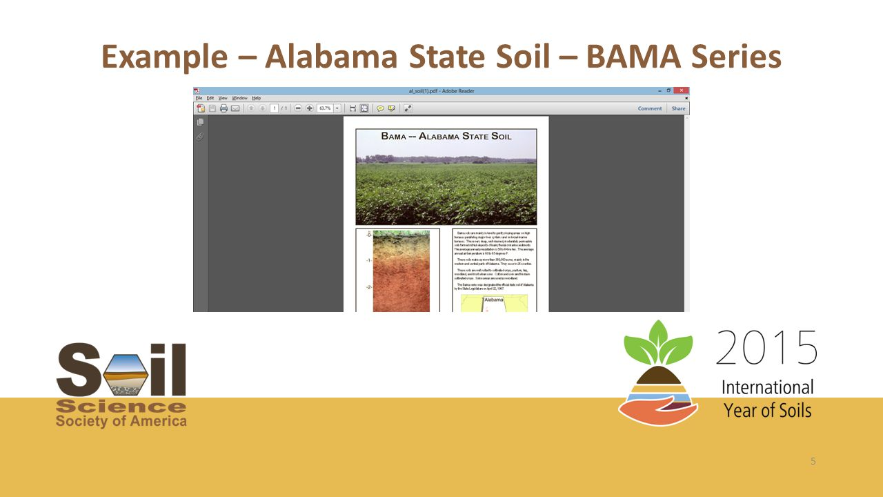 5 Example – Alabama State Soil – BAMA Series