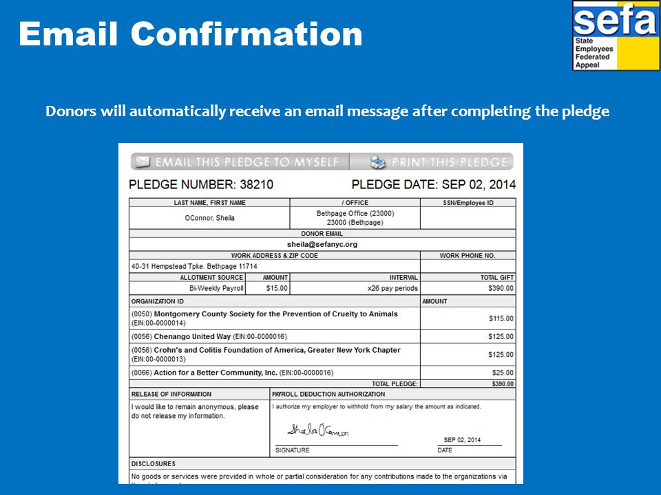 Donors will automatically receive an email message after completing the pledge Email Confirmation