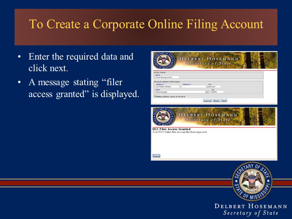 To Create a Corporate Online Filing Account Enter the required data and click next.