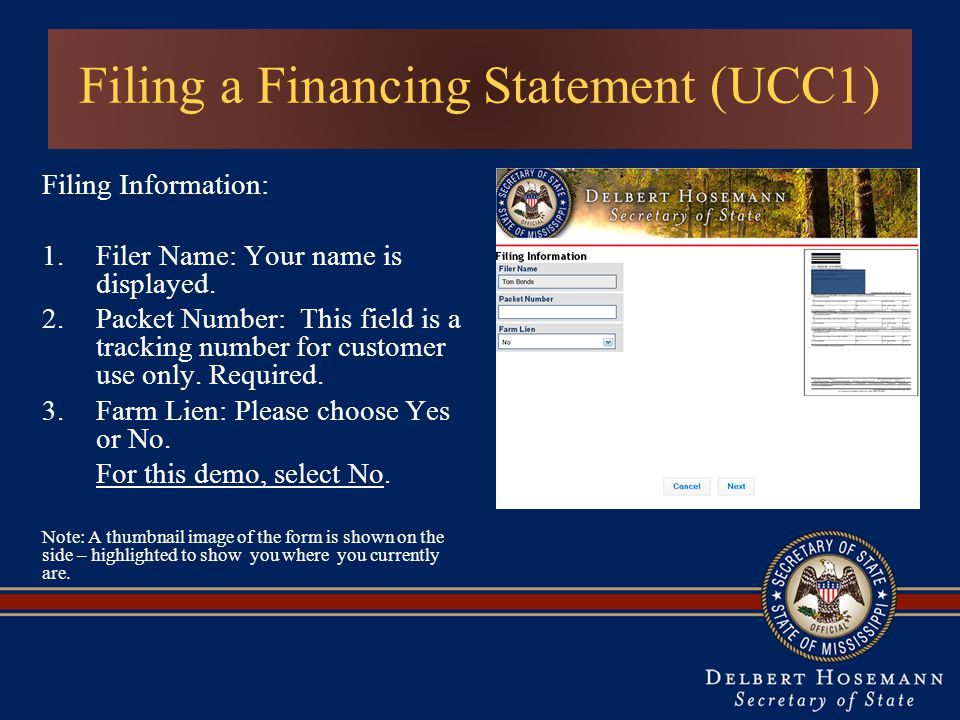 Filing a Financing Statement (UCC1) Filing Information: 1.Filer Name: Your name is displayed.