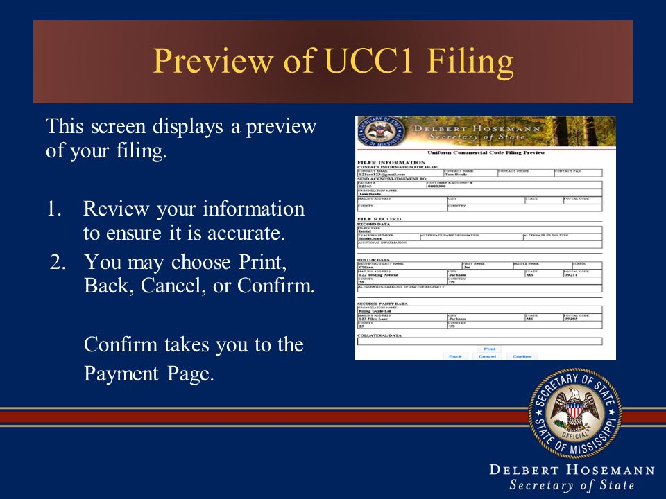 Preview of UCC1 Filing This screen displays a preview of your filing.