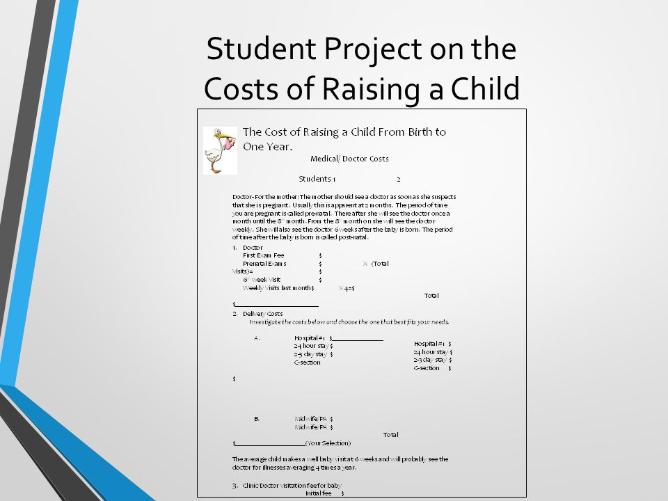 Student Project on the Costs of Raising a Child