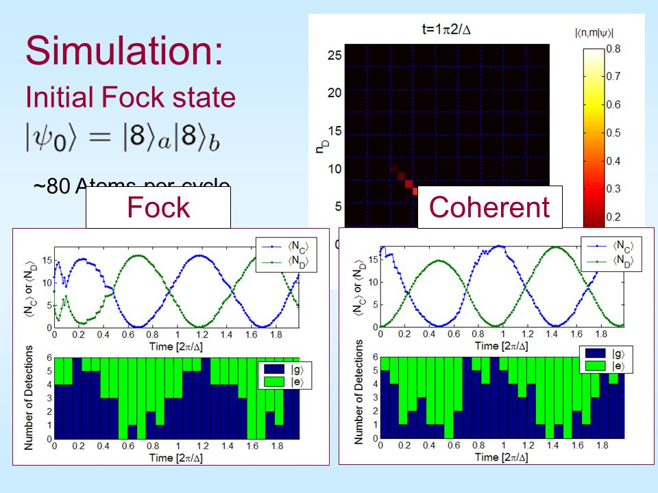 No Atoms Atoms Atoms per cycle 3 16 80 405 1026 Emergence of the Oscillating Phase State Robust emergence of stable oscillations with 100% visibility.