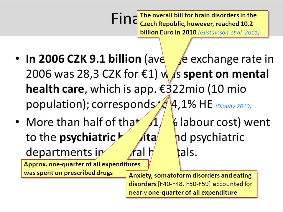 Finances In 2006 CZK 9.1 billion (average exchange rate in 2006 was 28,3 CZK for €1) was spent on mental health care, which is app.