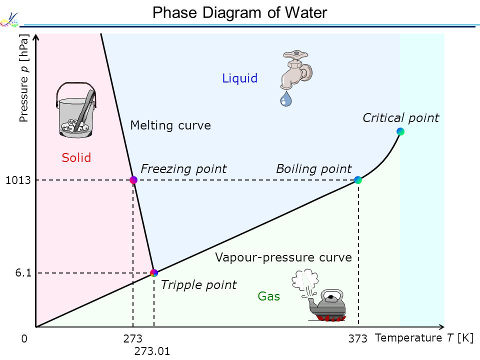 Phase Diagram of Water Solid Liquid Gas 0 Temperature T [K] Pressure p [hPa] 1013 6.1 273.01 273373 Vapour-pressure curve Tripple point Critical point Boiling pointFreezing point Melting curve