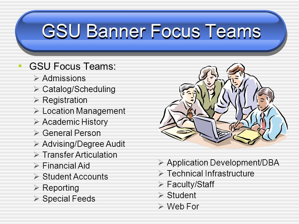 Georgia State University Teams  Steering Team: (7 members) The steering team provides project direction and resources.