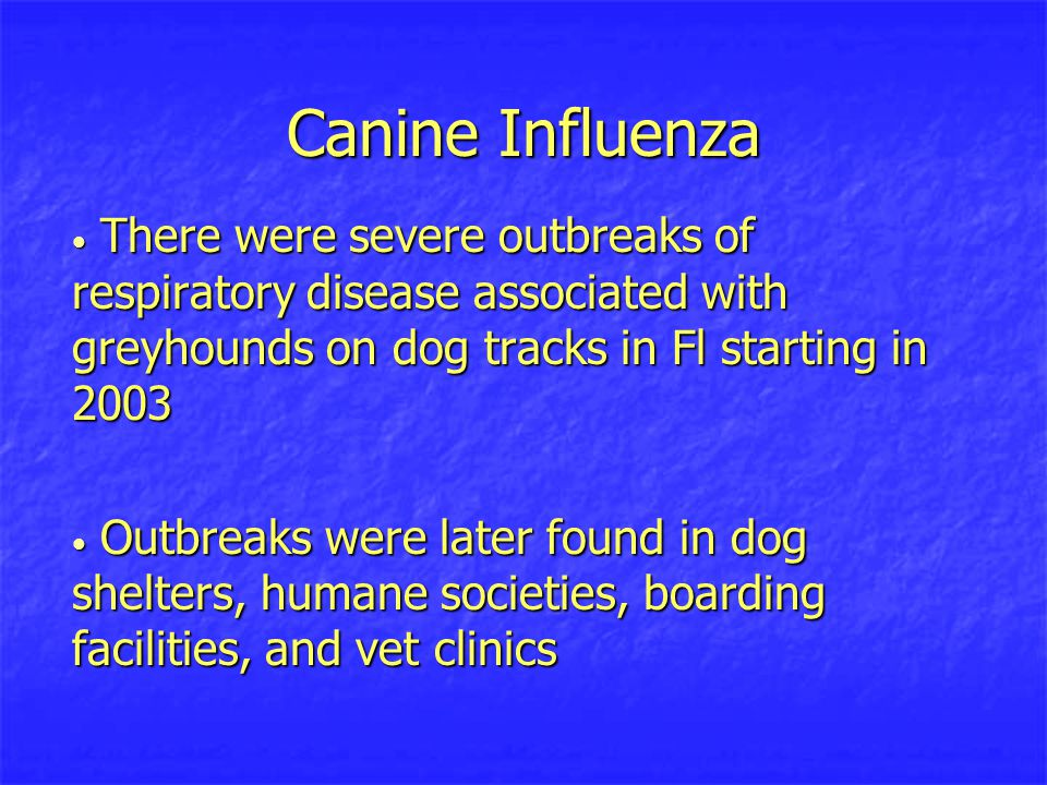 Canine Influenza Initial investigations during the outbreaks ruled out common pathogens as the source of infection Initial investigations during the outbreaks ruled out common pathogens as the source of infection Serology on the initial cases were screened for Influenza A/B strains and were positive for Type A H3 subtype Serology on the initial cases were screened for Influenza A/B strains and were positive for Type A H3 subtype Sick dogs were negative for human, swine and avian H3 Sick dogs were negative for human, swine and avian H3 Positive for equine H3 Positive for equine H3