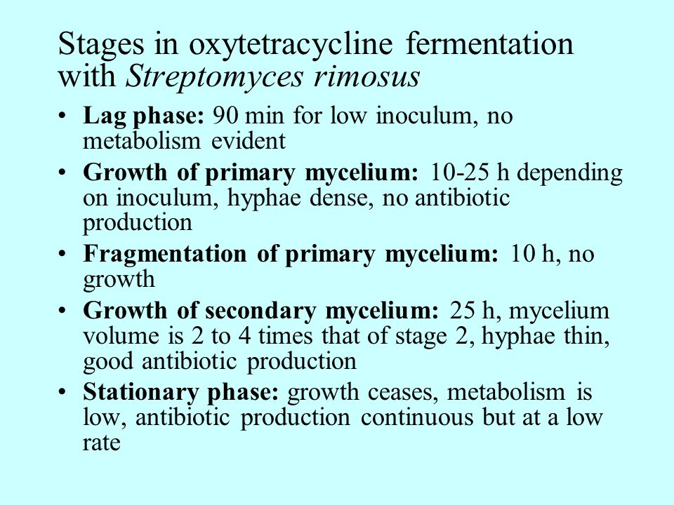 Stages in oxytetracycline fermentation with Streptomyces rimosus Lag phase: 90 min for low inoculum, no metabolism evident Growth of primary mycelium: