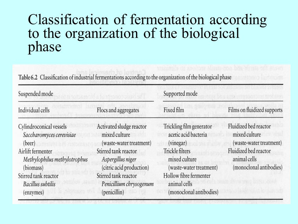 Classification of fermentation according to the organization of the biological phase