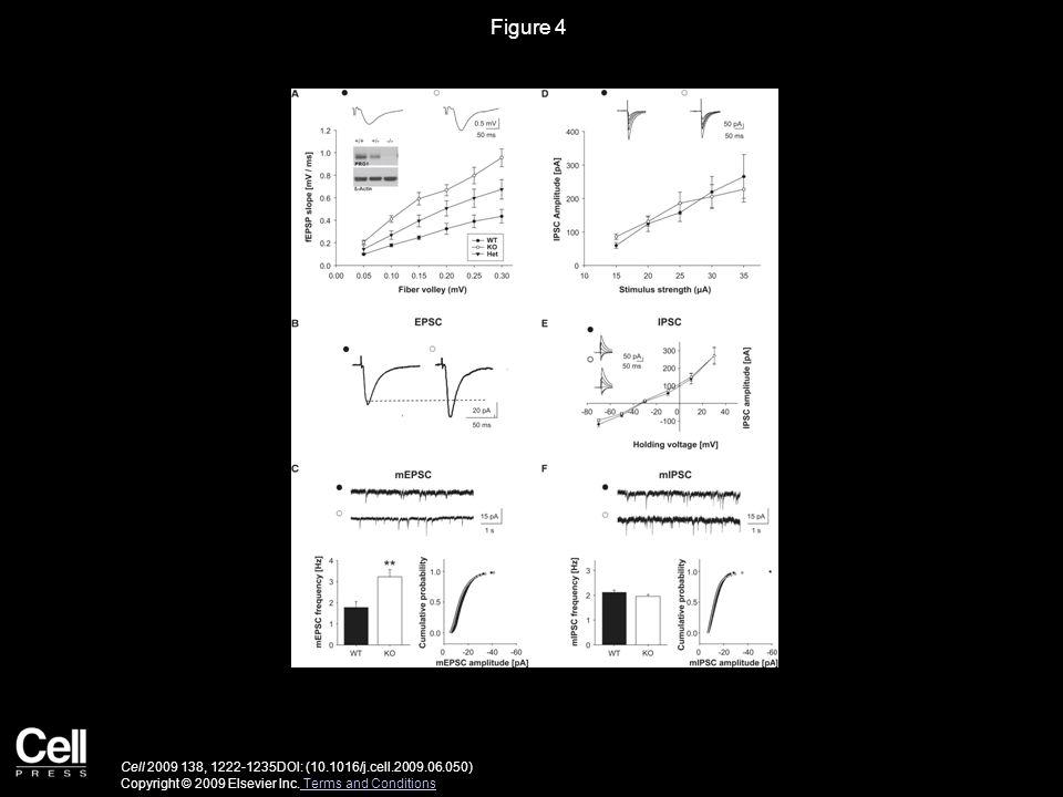 Figure 5 Cell 2009 138, 1222-1235DOI: (10.1016/j.cell.2009.06.050) Copyright © 2009 Elsevier Inc.