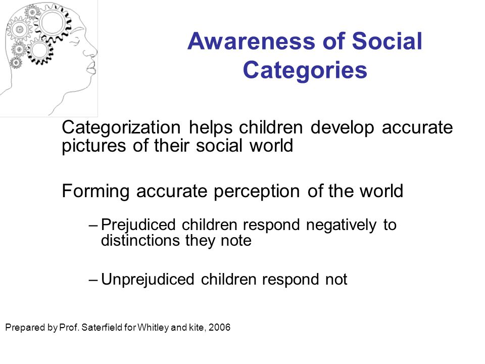 Awareness of Social Categories Categorization helps children develop accurate pictures of their social world Forming accurate perception of the world –Prejudiced children respond negatively to distinctions they note –Unprejudiced children respond not Prepared by Prof.