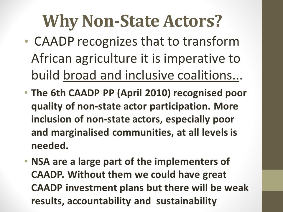 Why Non-State Actors.